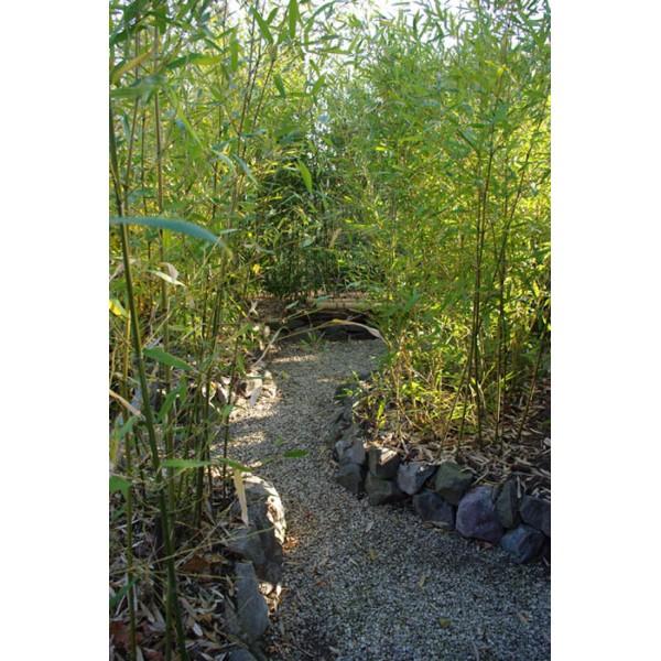 Japanese Gardens - Kert kis helyen
